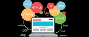 Custom Software Developers