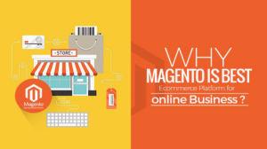 Magento Perfect Platform E-Commerce Business