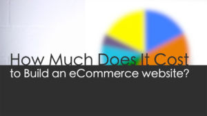 How Much Does an E-commerce Website Cost to Build