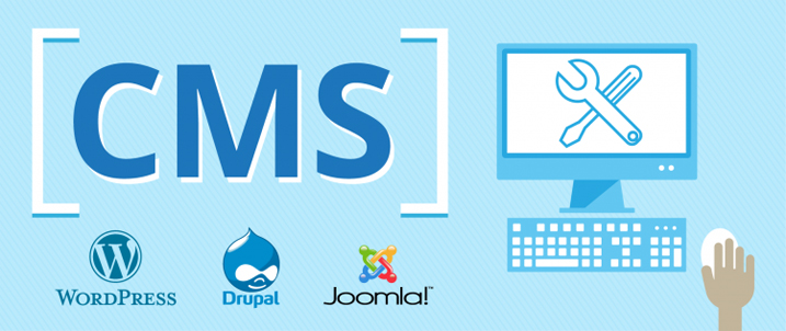CMS For Website Building