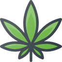 Medical Marijuana Web Design Company