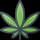 Medical Marijuana Web Design Company